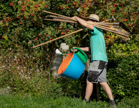 Drahtzug Gartenpflege bei Pro Infirmis, Zürich